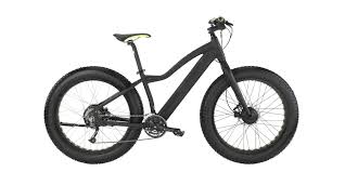 Global Electric Bicycles Market